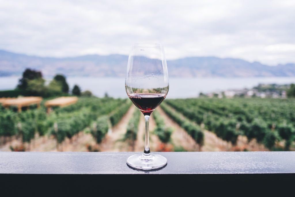 Ein Event zur Weinverkostung: Jede Traube verfügt über eine einzigartige Eigenschaft.